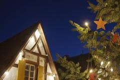 圣诞树和议院在晚上,德国 免版税库存照片