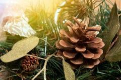 圣诞树和锥体与好的装饰 免版税图库摄影