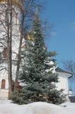 圣诞树在一个正统修道院里 库存照片