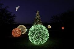 圣诞树在与月亮的晚上 免版税库存图片