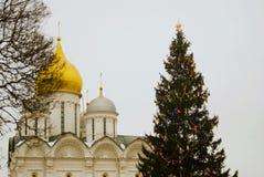 圣诞树在克里姆林宫 天使大教堂 免版税库存图片