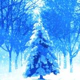 圣诞树在冬天背景中 免版税库存照片