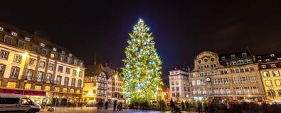 圣诞树在史特拉斯堡, 2014年-阿尔萨斯,法国 免版税库存图片