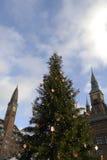 圣诞树在哥本哈根TOWH霍尔 库存照片