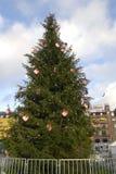 圣诞树在哥本哈根TOWH霍尔 免版税库存图片