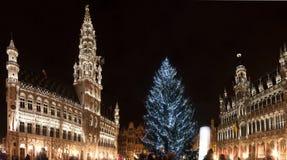 圣诞树在布鲁塞尔大广场,布鲁塞尔 免版税库存照片