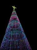 圣诞树在晚上在城市 免版税图库摄影