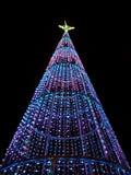 圣诞树在晚上在城市 库存照片