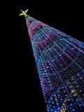 圣诞树在晚上在城市 库存图片