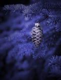 圣诞树在晚上 免版税库存照片