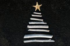 圣诞树在热带。 免版税库存图片