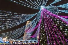 圣诞树在维尔纽斯和圣诞节市场上 免版税库存图片