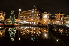圣诞树在莱顿 免版税库存图片