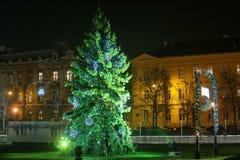 圣诞树在萨格勒布 库存照片
