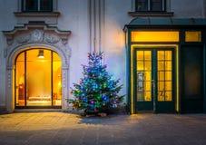 圣诞树在维也纳 免版税库存图片