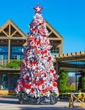 圣诞树在巴波亚公园 图库摄影