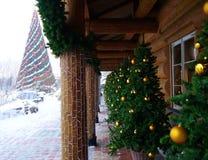 圣诞树在Lido餐馆 库存照片