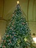圣诞树外部火车站 免版税库存图片
