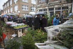 圣诞树待售在哥伦比亚路花市场上在Bethnal绿化 免版税库存图片