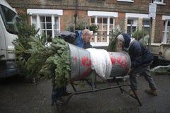 圣诞树待售在哥伦比亚路花市场上在Bethnal绿化 库存照片