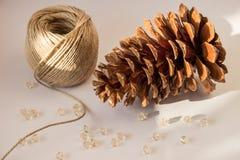 圣诞树杉木锥体装饰 免版税库存图片