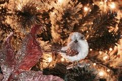 圣诞树特写镜头-细节 图库摄影