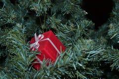 圣诞树玩具 库存图片