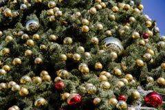 圣诞树的片段 免版税库存照片