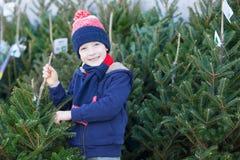 圣诞树的男孩购物 免版税库存图片