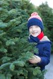圣诞树的男孩购物 免版税图库摄影