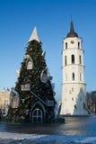 圣诞树的看法在维尔纽斯,立陶宛 免版税库存图片