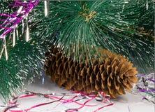圣诞树的装饰是杉木锥体。 免版税图库摄影