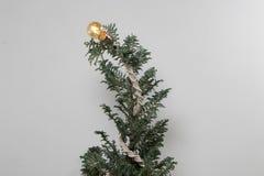 圣诞树编织有花边和电灯泡白色背景 免版税库存图片
