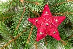 圣诞树装饰红色星形 免版税库存图片