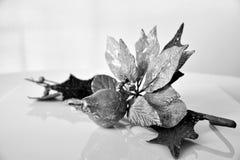 圣诞树装饰装饰品在黑白 免版税库存照片