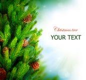 圣诞树边界设计 免版税库存图片