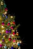 圣诞树边界 免版税库存照片
