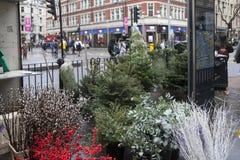 圣诞树销售在圣诞节市场上在伦敦 库存图片