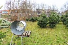 圣诞树销售 免版税库存照片