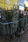 圣诞树销售 免版税库存图片