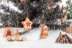 圣诞树风景 图库摄影