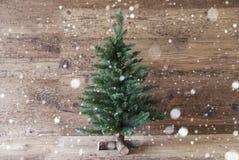 圣诞树,雪花,年迈的木背景,拷贝空间 库存照片