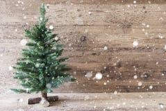 圣诞树,年迈的木背景,拷贝空间,雪花 图库摄影