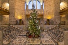 圣诞树- 2014年12月, 14 主要圣诞树在华盛顿州国会大厦 库存图片