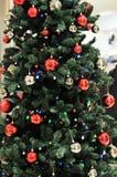 圣诞树 库存图片