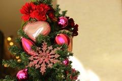 2圣诞树 免版税库存照片