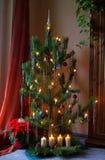 圣诞树08 库存照片