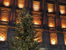圣诞灯和窗口 免版税图库摄影