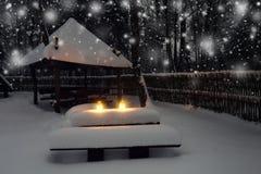 圣诞灯在森林里在圣诞夜里 夜与蜡烛的xmas背景 库存照片