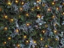 圣诞灯杉木 免版税库存照片